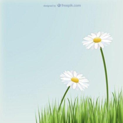 Daisies Flowers with Grass Free Vector