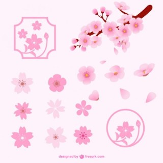 Different Cherry Blossom Flowers Free Vector