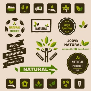 Ecology Flat Retro Graphic Elements Free Vector