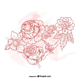 Flowers Drawing Free Vector