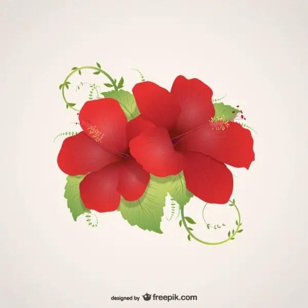 Flowers Illustration Free Vector