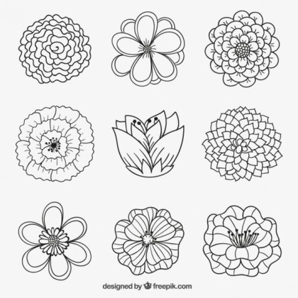Flowers in Hand Drawn Style Free Vector