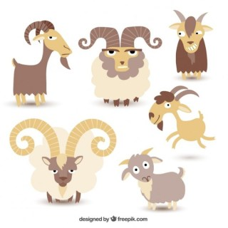 Goat Illustration Collection Free Vector