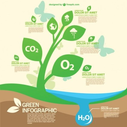 Green Eco Infography Template Free Vector