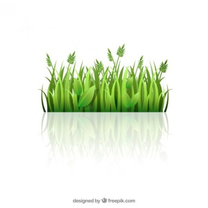 Green Grass Free Vector