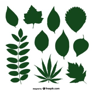 Green Leaves Silhouette Collection Free Vector