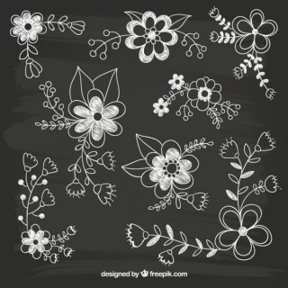 Hand Drawn Flowers On Blackboard Free Vector