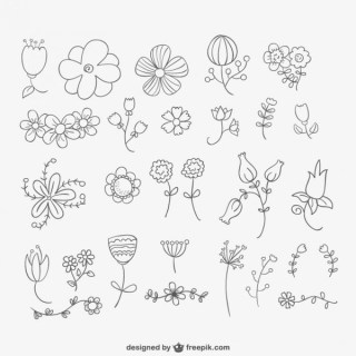 Hand Drawn Flowers Pack Free Vector