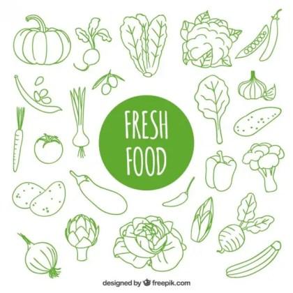 Hand Drawn Fresh Food Free Vector