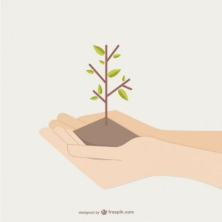Hands Holding Growing Tree Free Vector