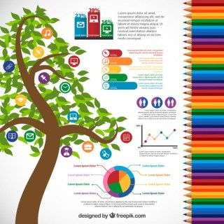 Infographic for Education Free Vector