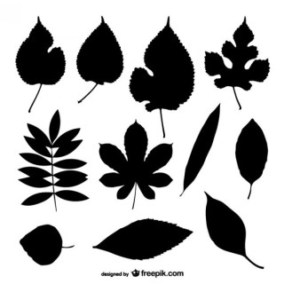 Leaf Silhouettes Collection Free Vector