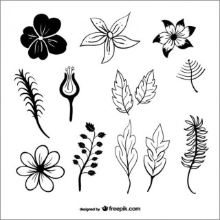 Leaves and Flowers Silhouettes Free Vector