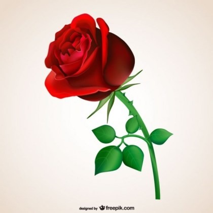 Passionate Red Rose Free Vector