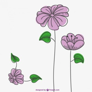 Pink Flowers Drawing Free Vector