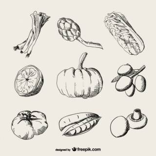 Realistic Drawing Vegetables Free Vector