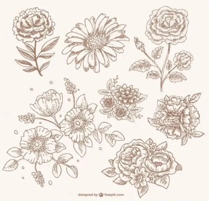 Retro Sepia Floral Line Art Free Vector