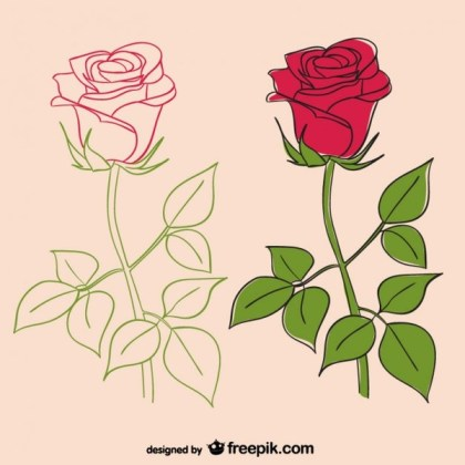 Roses Illustrations Free Vector