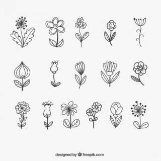 Sketchy Flowers Free Vector