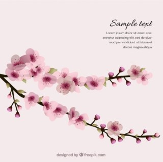 Spring Background with Cherry Blossoms Free Vector