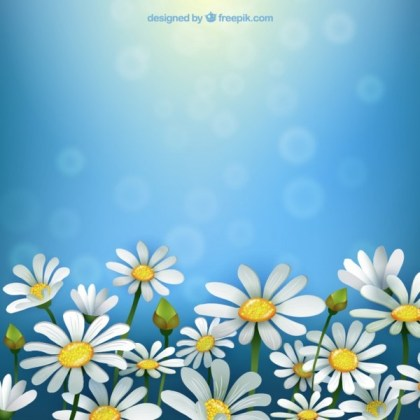 Spring Background with Daisies Free Vector