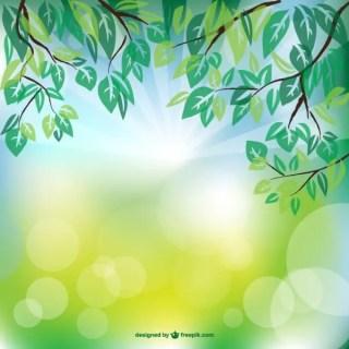 Spring Sunlight Background Free Vector