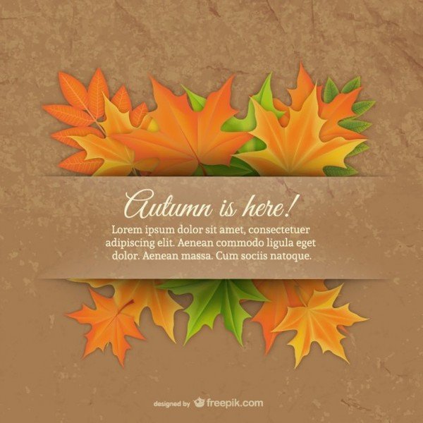 Template with Fall Leaves Free Vector