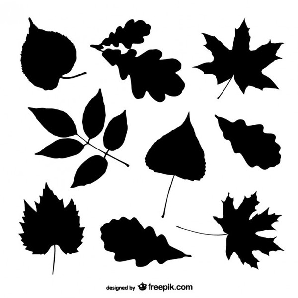 Tree Leaves Silhouettes Set Free Vector