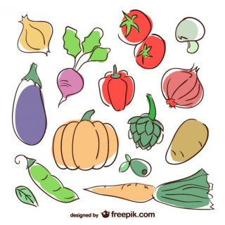 Vegetable Colorful Illustration Free Vector