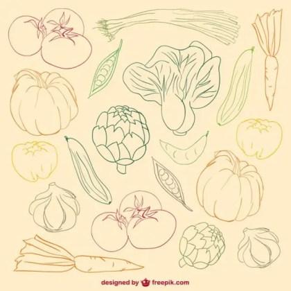Vegetables Colour Doodle Free Vector