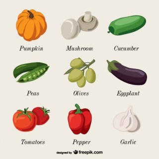 Vegetables Name Collection Art Free Vector