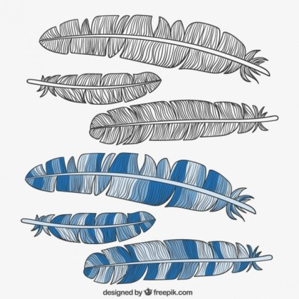 Vintage Feather Set Free Vector