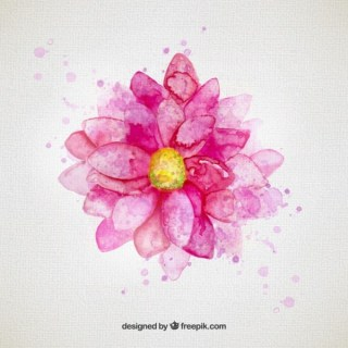 Watercolor Flower in Pink Tone Free Vector