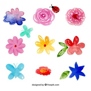 Watercolor Flowers Collection Free Vector