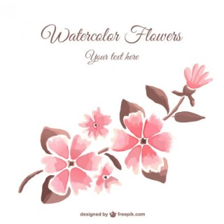 Watercolor Style Flowers Free Vector