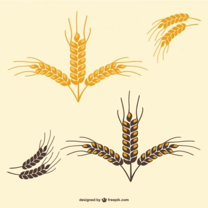 Wheat Leaves Free Vector