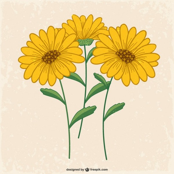 Yellow Flowers Free Vector