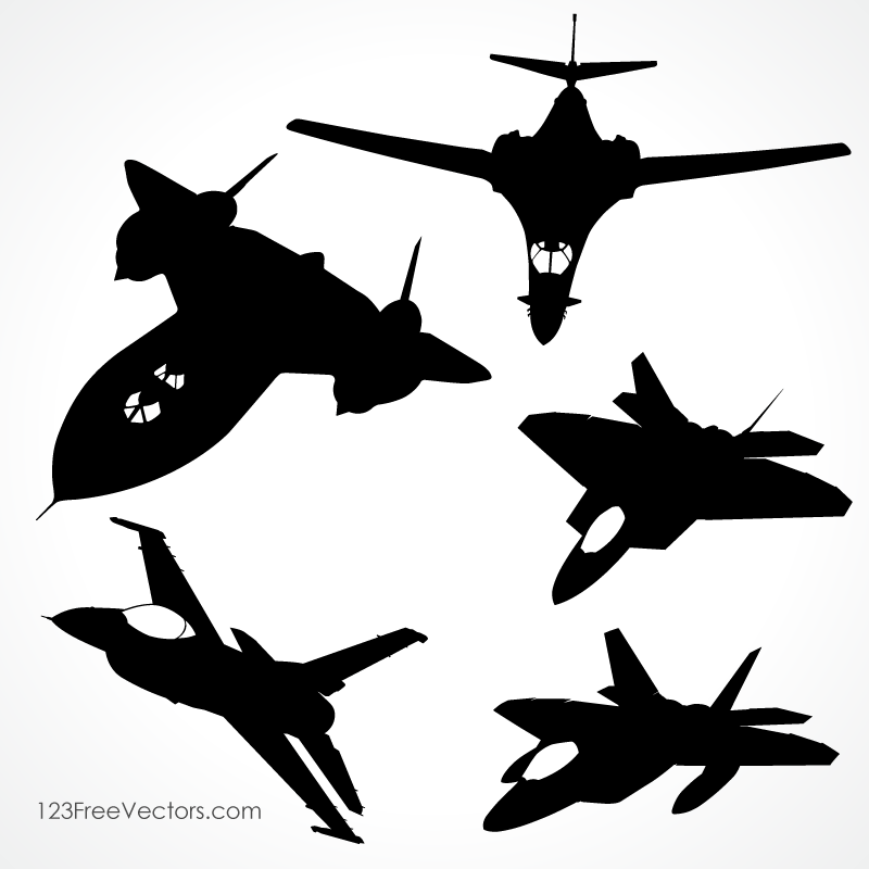 Fighter Aircraft Vector
