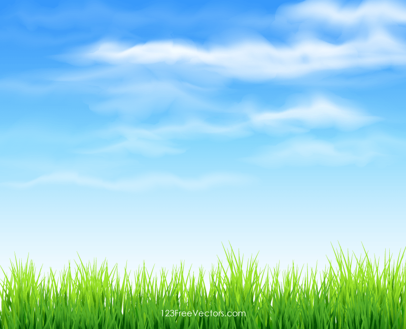 Grass background Picsart 123freevectors Sky And Grass Background