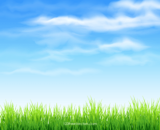 Sky and Grass Background