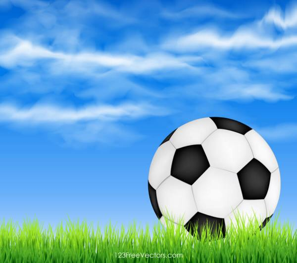 Soccer Ball on Green Grass with Sky Background