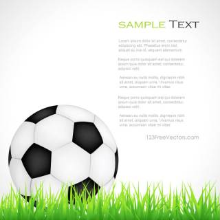 Soccer Ball on Green Grass Clipart