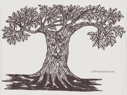 Tree Face Drawing Vector Image