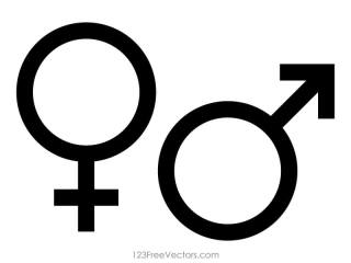 Male and Female Gender Symbols Vector