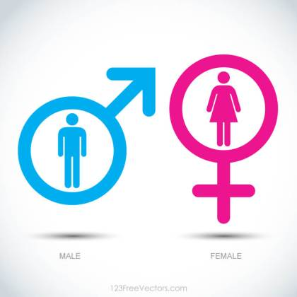 Male and Female Icons Illustration