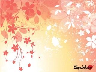 Sakura: Japanese Cherry Blossom Background Vector