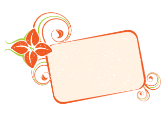 Orange Floral Frame Vector Image