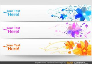 Abstract Colorful Flower Banner Graphics