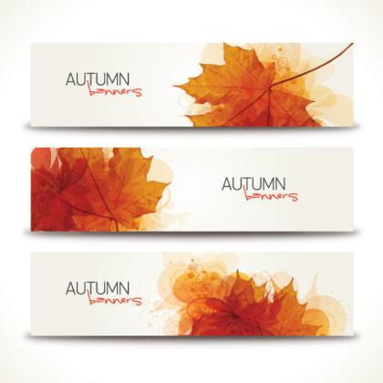 Colorful Autumn Leaves Banners Vector Illustrator