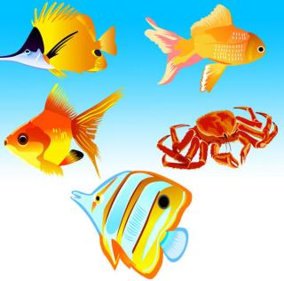Fish Vector Free Download